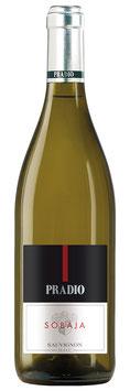 "Sauvignon Blanc ""Sobaja"" Weingut Pradio - Friaul - Italien"