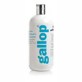 Carr & Day & Martin GALLOP Extra Strenght Shampoo - 500 ml - VERSANDKOSTENFREI