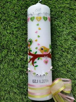 Taufkerze Vögelchen TK 214 Apfelgrün-Gelb-Rosa Holoflitter >> Schleife Rosa-Apfelgrün