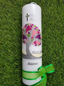 Taufkerze  Lebensbaum pink mit Herzchen Silberschrift  TK401 / Grüne Schleife