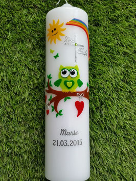 Taufkerze EULE mit Regenbogen & Silberschrift TK180 Apfelgrün-Grün Uni