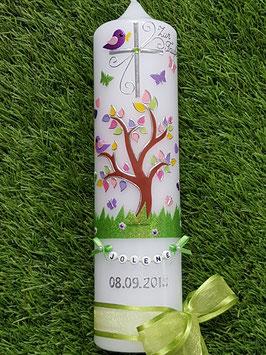Taufkerzen Junge  Lebensbaum Apfelgrün mit Buchstabenkette  TK400-2