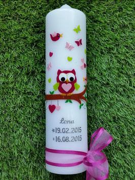 Taufkerze EULE das Original mit Silberschrift TK180 in Pink-RosaApfelgrün Uni ohne Kreuz