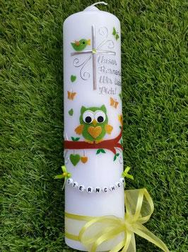 Trauerkerze Eule TRK181 in Apfelgrün-Gelb Holoflitter