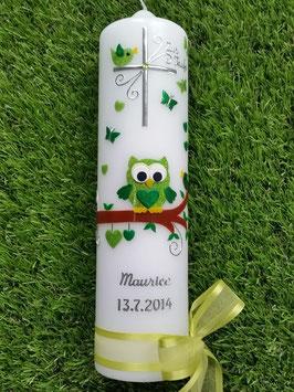 Taufkerze EULE das Original TK180 in Apfelgrün-Grün Holoflitter