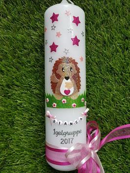Taufkerze TK272 Igelchen Pink-Rosa Holoflitter mit Sterne