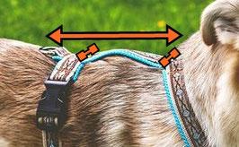 Führgeschirr - Rückensteg