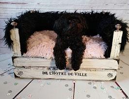 Hundeschlafkörbchen mit Fell