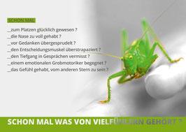 DIE VIELFÜHLER KARTE - 5 STÜCK