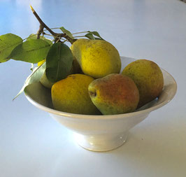 Bowl for Pears and Fruit