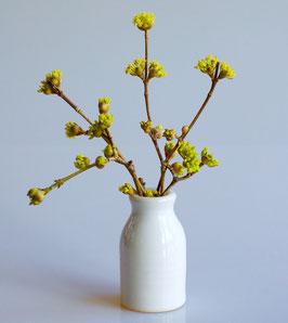 Milk Bottle Bud Vase
