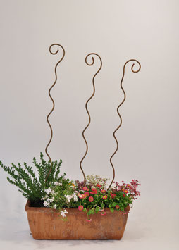 Squiggle plant supports- gift wrapped