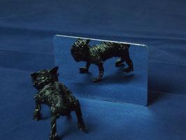 MP-HC 0.5㎜厚PET カードサイズ 10枚セット