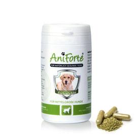 AniForte® ZeckenSchild für Hunde natürliche Zeckenabwehr