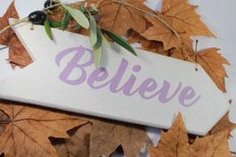 Flèche Believe