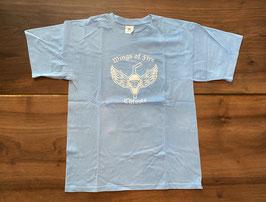Premium T-Shirt hellblau