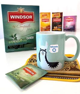 Té Windsor Boldo (Tee mit Boldo-Blättern, 5 Teebeutel á 16 g)