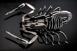 - Skorpion Titus  -