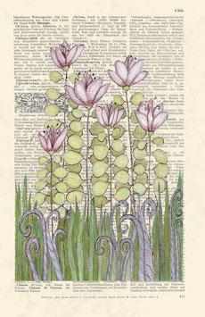 Kunstdruck, vintage Lexikonseite mit Pflanzenmotiv