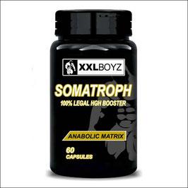 1x SOMATROPH