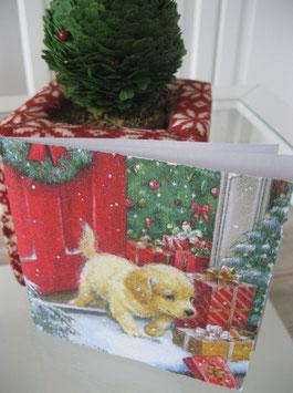 Weihnachtskarte mit kleinem Hund