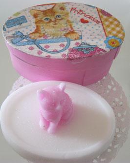 Katzen-Seife in Schachtel