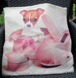 Kissenüberzug Hund in Schachtel