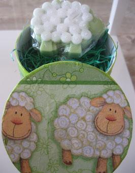 Seifen-Schaf in Schachtel