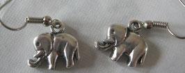 Elefanten-Ohrringe glatt