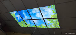 LED Deckenhimmel 1.20m x 2.40m - Set 8 Stück LED Panel 62x62cm, 48W, 6000-6500k, 0-10V dimmbar, inkl. Druck und Netzteil, Rahmenfarbe weiß