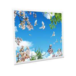 LED Deckenhimmel - Panel 62x62cm, 48W, 6000-6500k, 0-10V dimmbar, ultraflach, inkl. Druck und Netzteil, Rahmenfarbe weiß