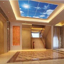 LED Deckenhimmel 2.40m x 2.40m - Set 16 Stück LED Panel 62x62cm, 48W, 6000-6500k, 0-10V dimmbar, inkl. Druck und Netzteil, Rahmenfarbe weiß