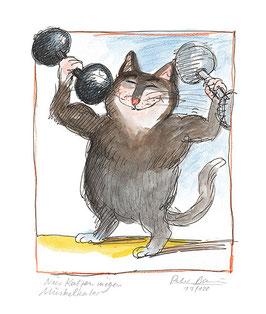 Nur Katzen mögen Muskelkater
