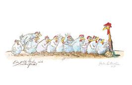 Ein guter Hahn wird selten fett!