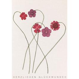 """Herzblüten Karte Blumen """"Herzlichen Glückwunsch"""""""