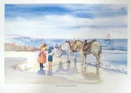 Meeting the Beach donkeys