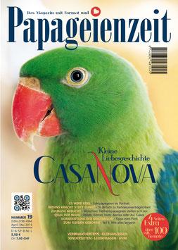 e-Magazin 19