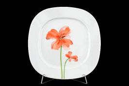Набор закусочных тарелок ЛЕОН КРАСНЫЕ МАКИ Thun 20 см