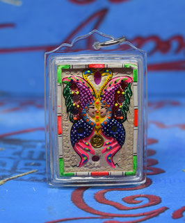 C101 . Butterfly with Medallion