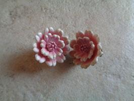 Clips fleurs