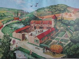"""Affiche pédagogique MDI """"l'été/les terrains riches"""""""