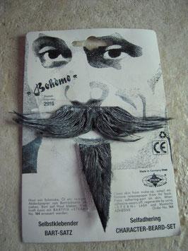 Postiche moustache et barbichette