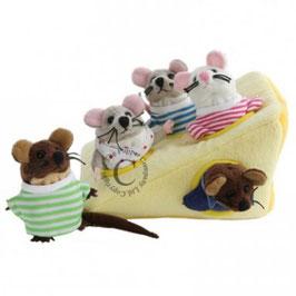 Gatenkaas met muizenfamilie