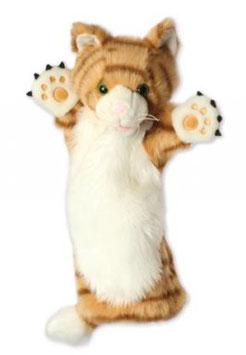 Kat Ginger (lange handschoen)