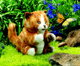 Oranje gestreepte kat