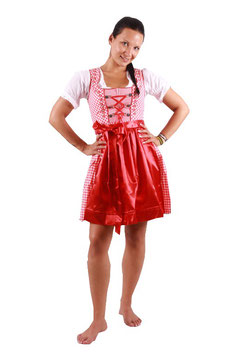 3 teiliges Dirndl Set in rot