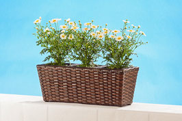 Blumenkasten mit drei Einsätzen in braun