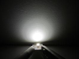LED Häuserbeleuchtungen neonweiss / kaltweiss