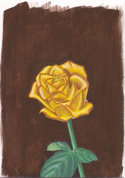 Rose Nr. 56