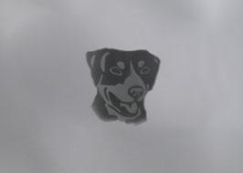 Hund 1-P